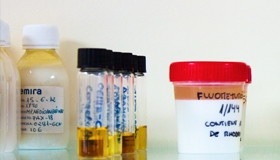 Insecticide liquid formulations
